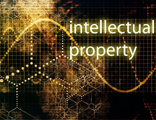 Intellectual Property Report